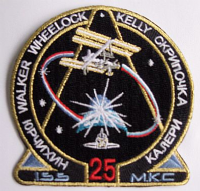 International Space Station Expedition 25 Patch